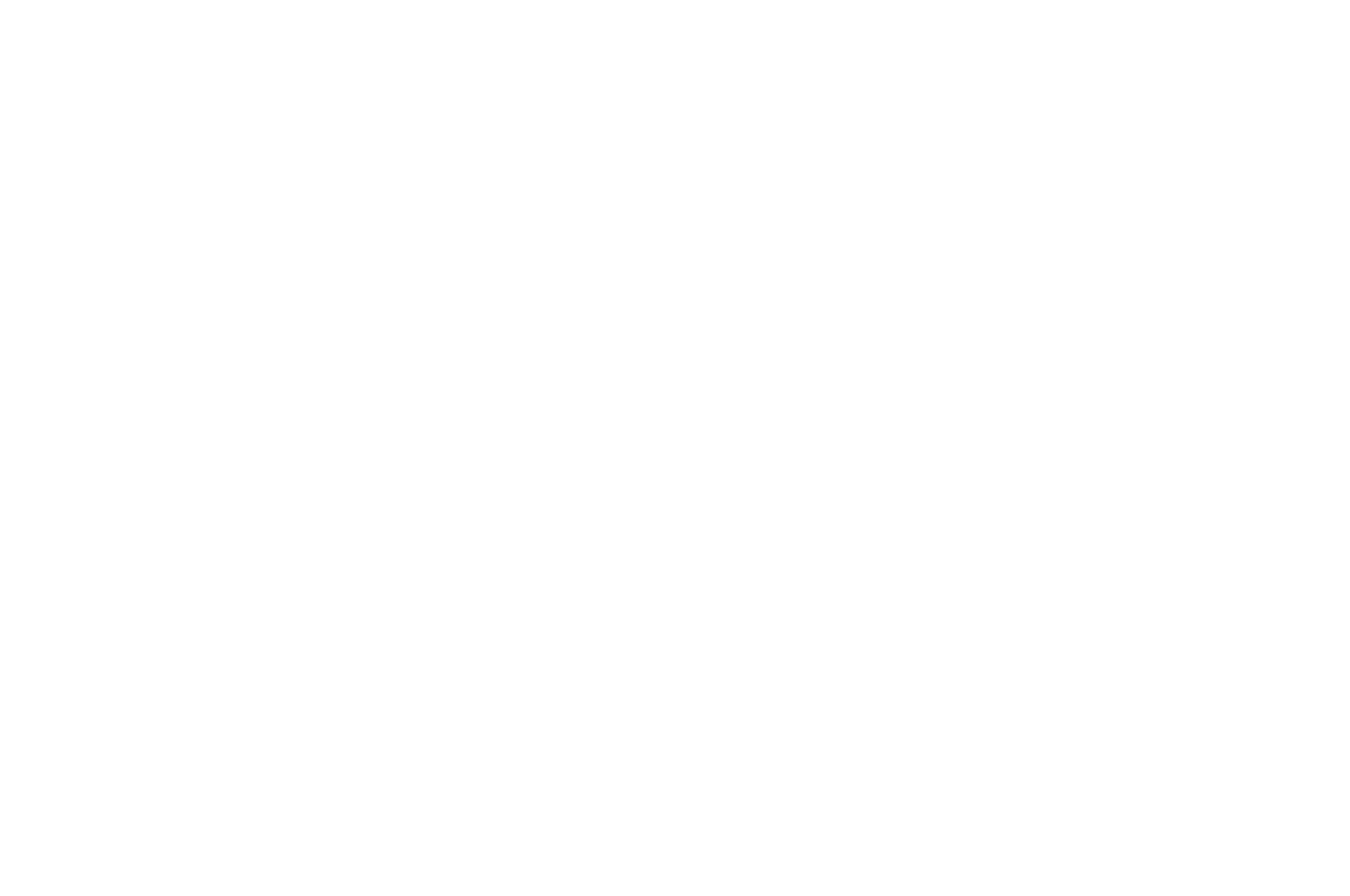 OFFICIAL SELECTION - Way Down Film Festival - 2017 (1).png