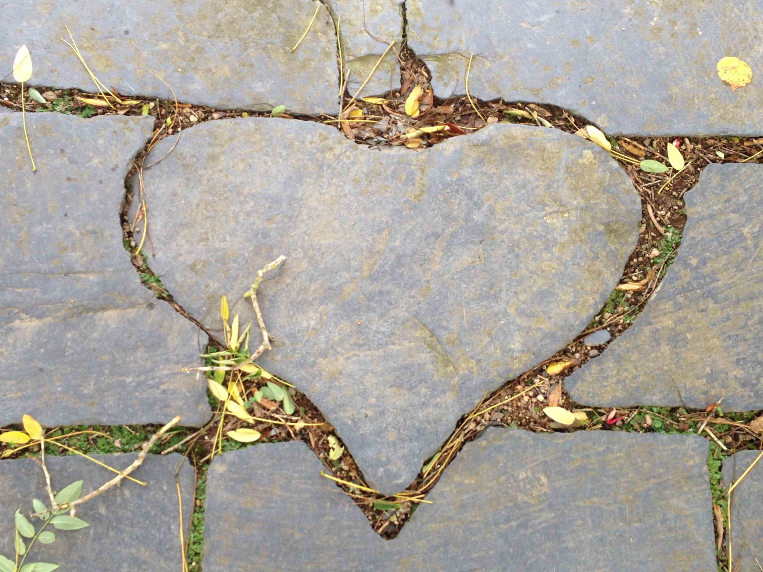 CdP Heart.jpg