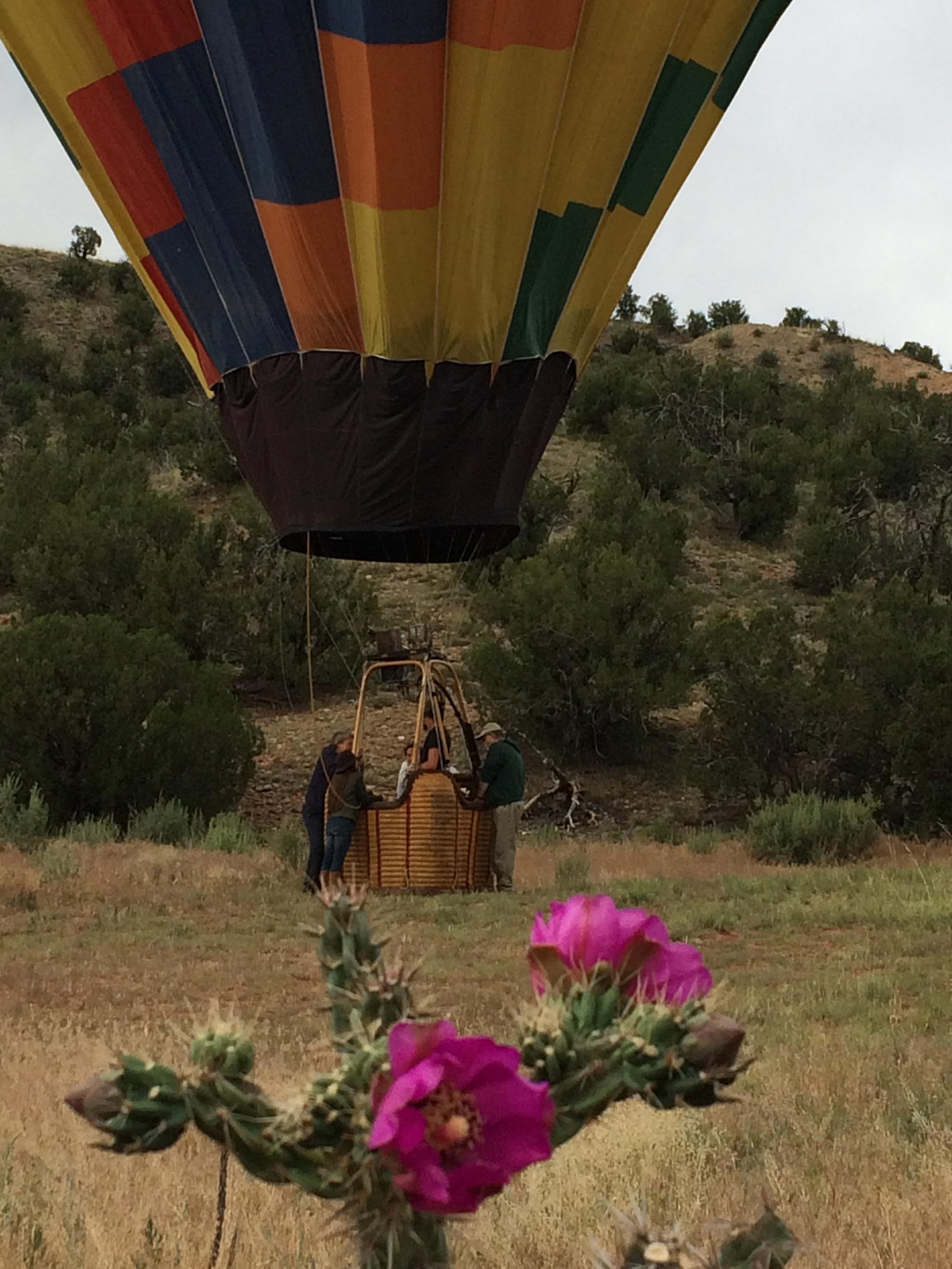 New Mexico-balloonwithcactus.jpg