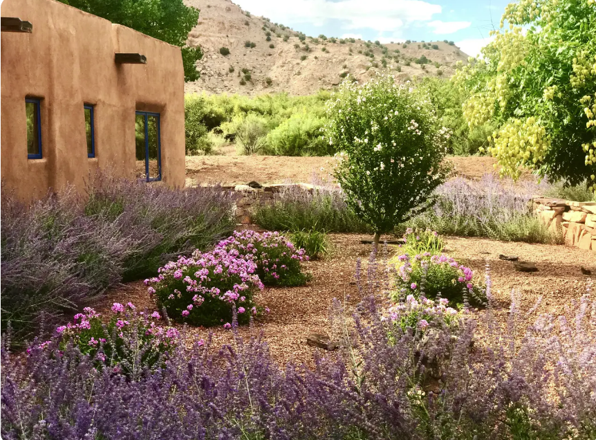New Mexico-Abiquiu House-Airbnb summer.png