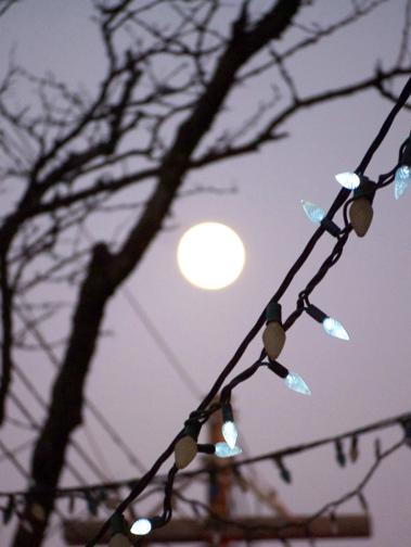 toronto_night1.jpg