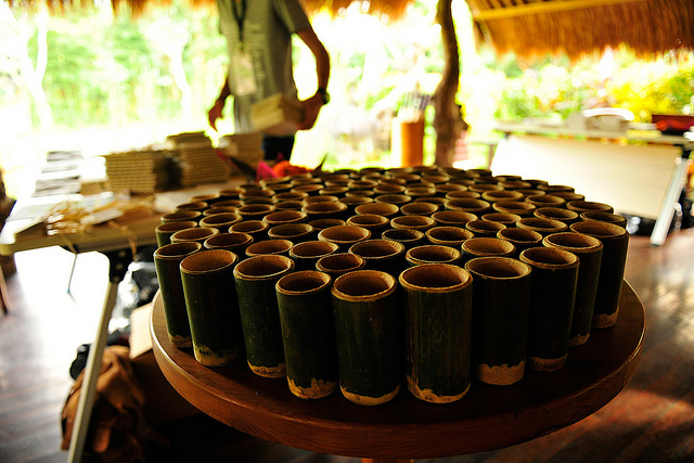 Bamboo Cups at TEDxUbud
