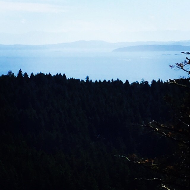 Looking south toward the Olympics from George Hill on Pender Island, BC.