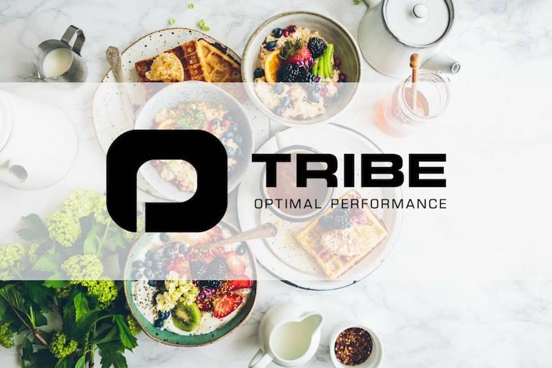 optimal_tribe_kansikuva_pieni.jpg