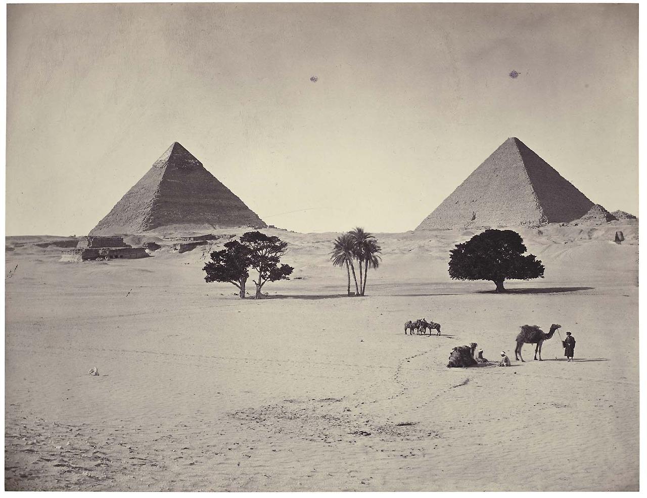 fiona dickson egypt.jpg