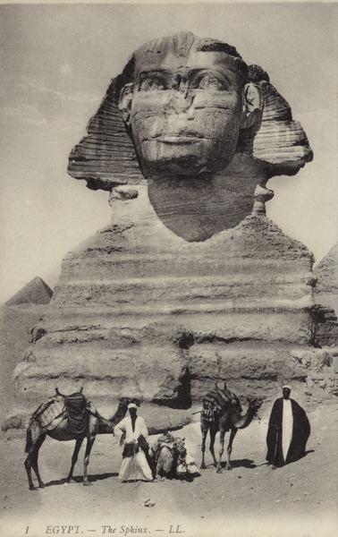 fiona dickson website egypt.jpg