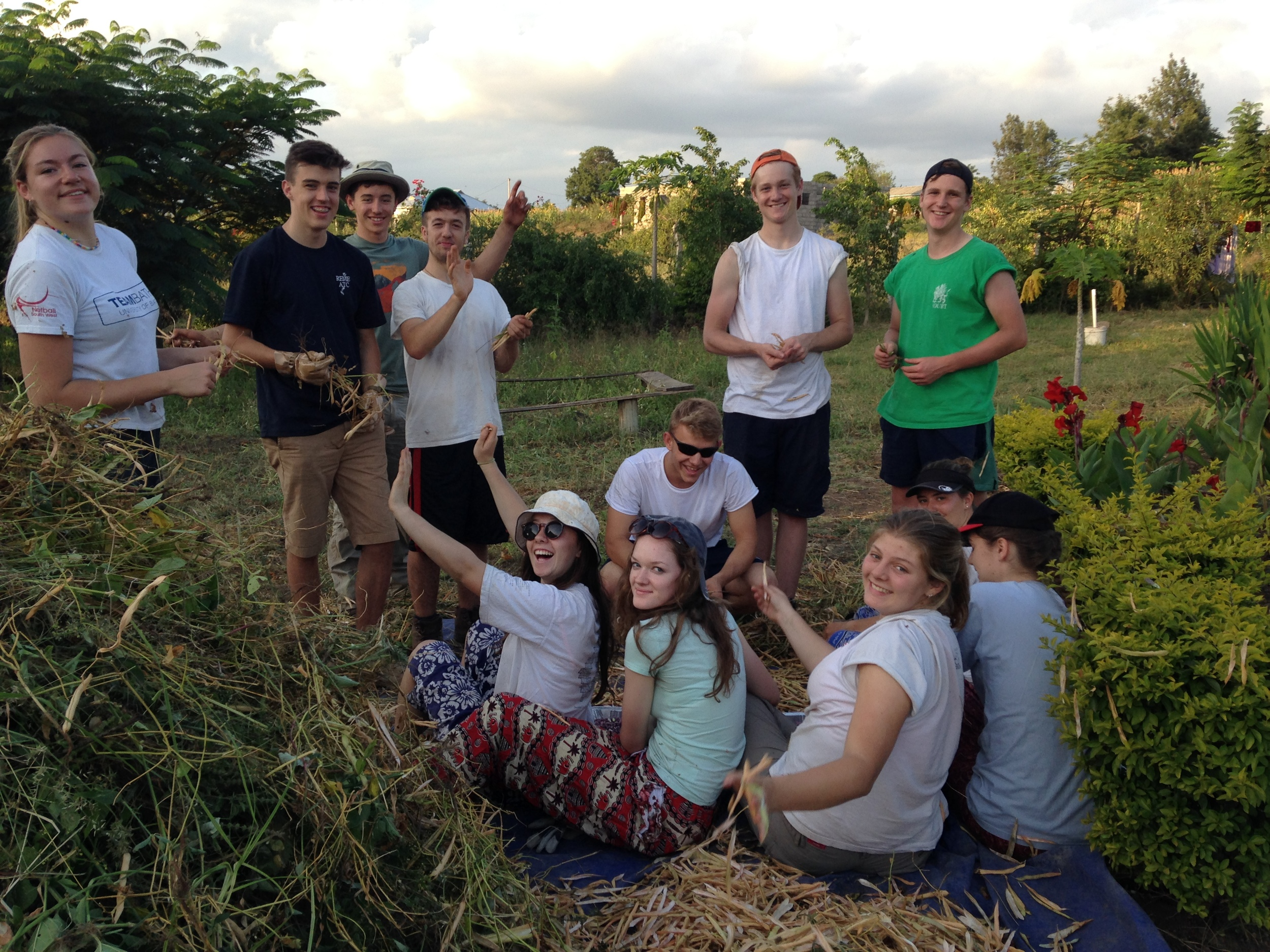 Harvest time!  Happy smiles as the students work hard to pull and 'snap-open' the pods for the beans.