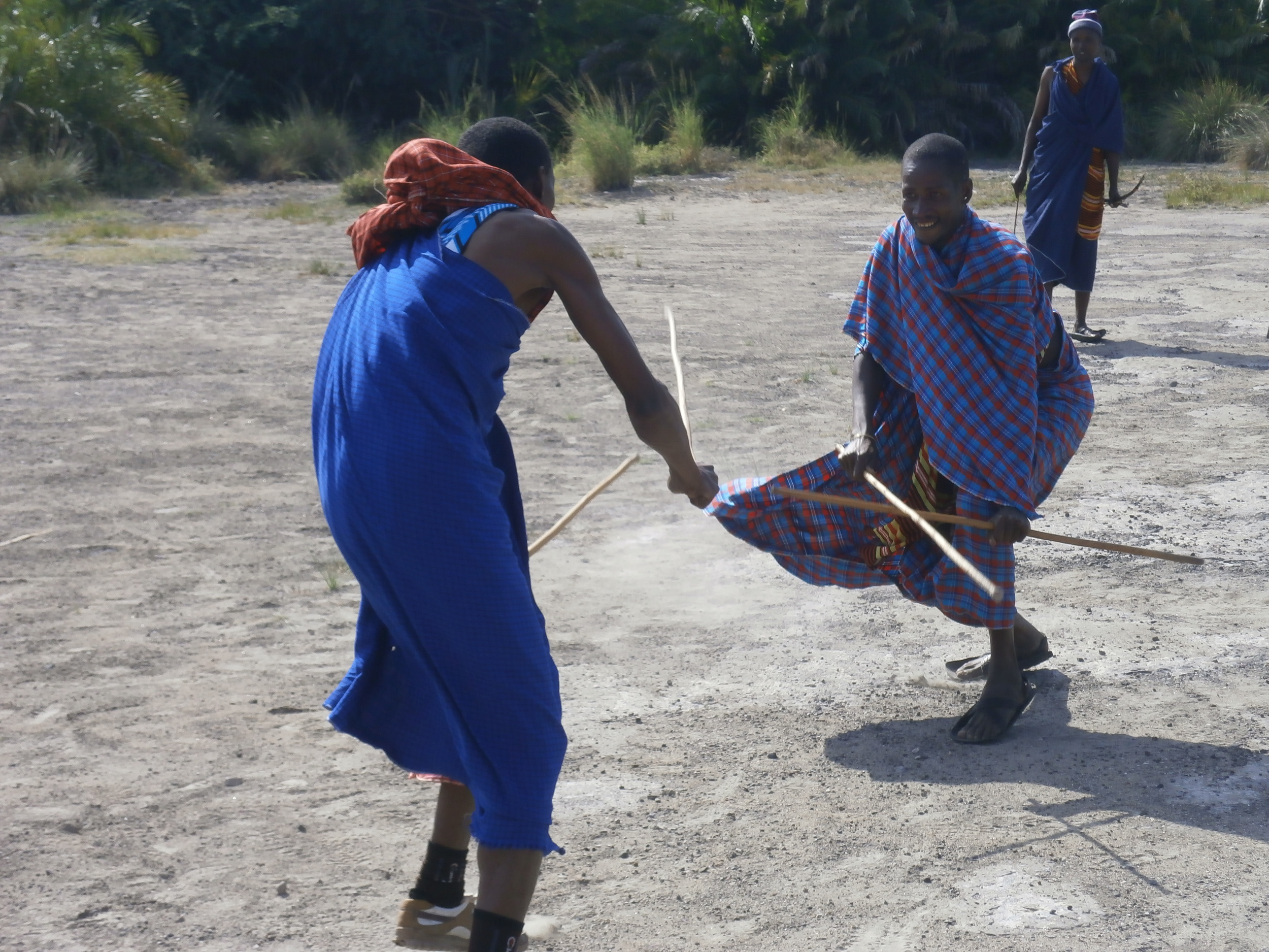 'OUCH' THAT HURT!     TWO MAASAI MORAN WARRIORS COMPETE WITH THEIR TRADITIONAL 'STICK' FIGHTING.  LAST ONE STANDING IS THE WINNER.