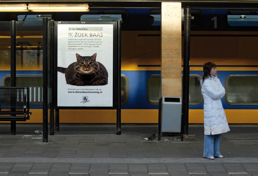 ik-zoek-een-baas-trein-ns-dierenbescherming