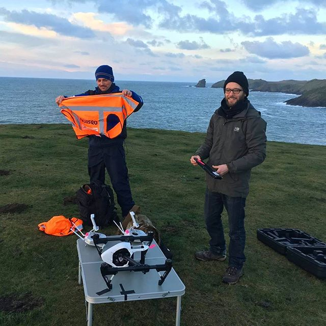 Preparing to take flight off Pembrokeshire coast.