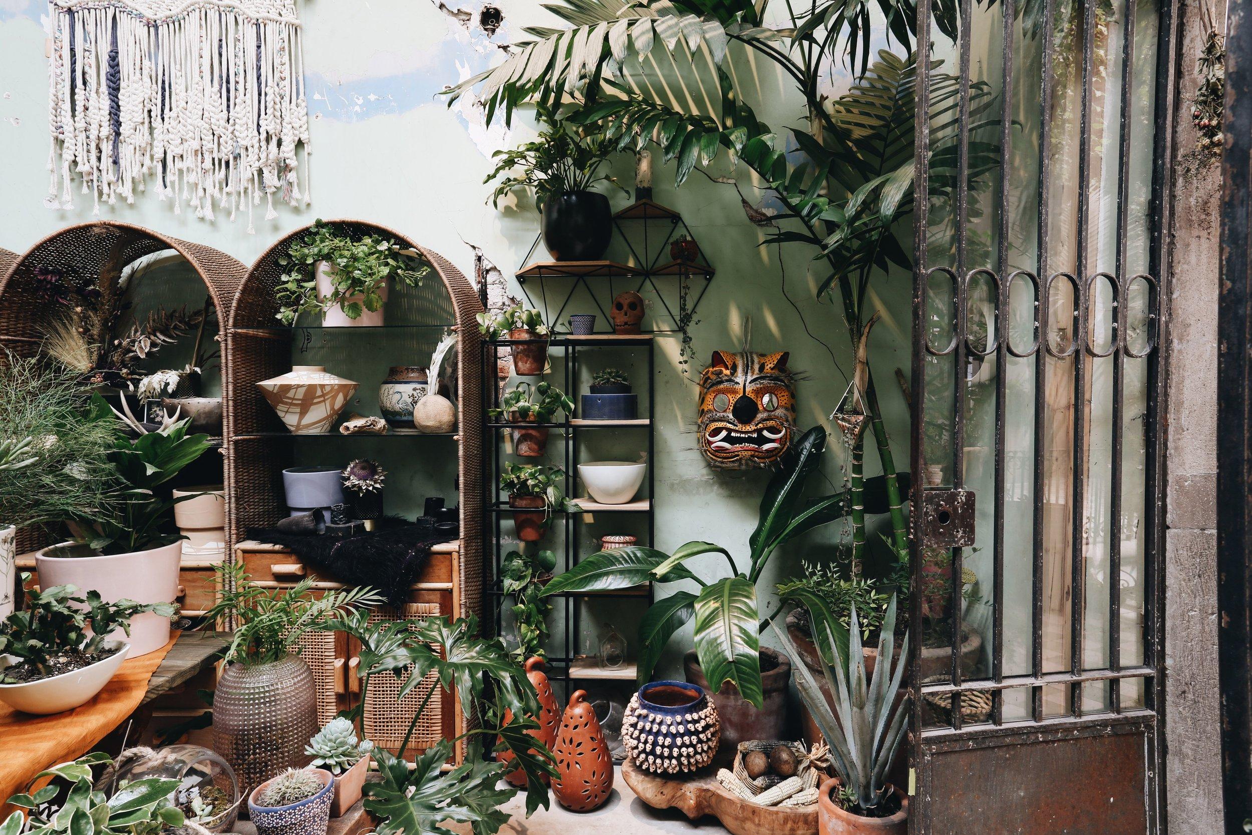An Insider's Guide to Colonia Juárez, Mexico City's Hottest Neighborhood - Vogue