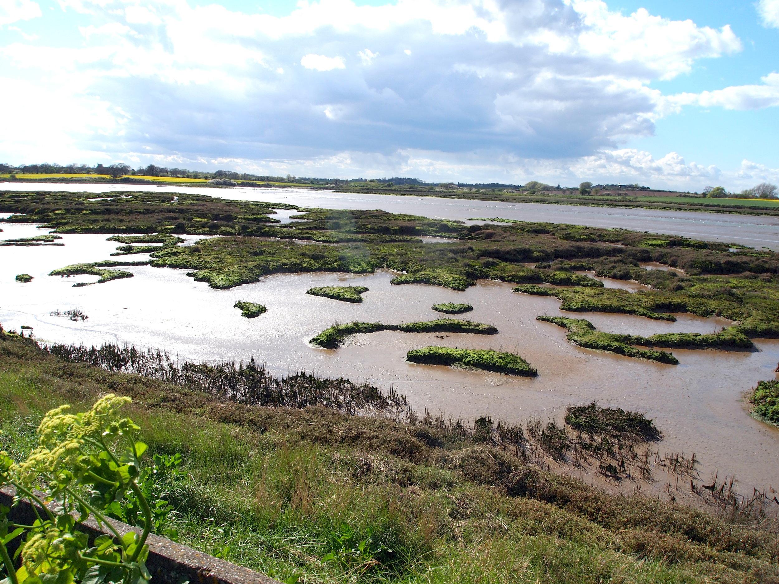 Hamford Water national nature reserve