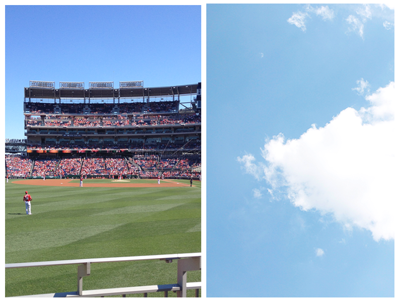 ^^ Cheering on the Nats from the second row.