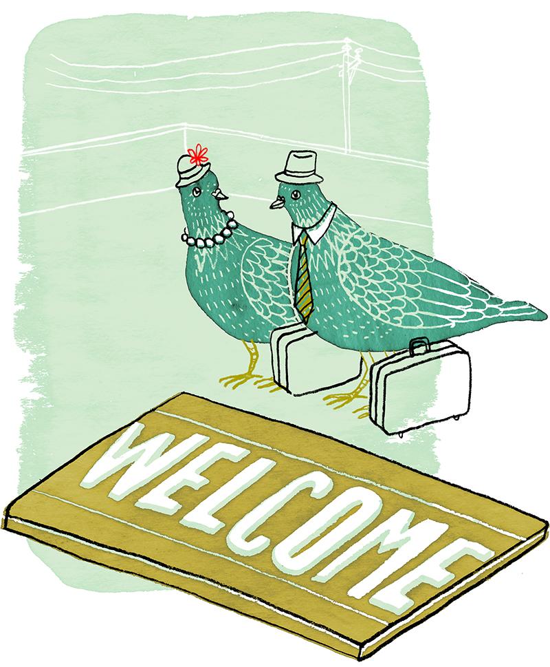 Une femme partage sa joie de voir nicher un couple de pigeons sur son balcon. / A woman shares the joy of having pigeons nesting on her balcony.   Client : Globe and Mail