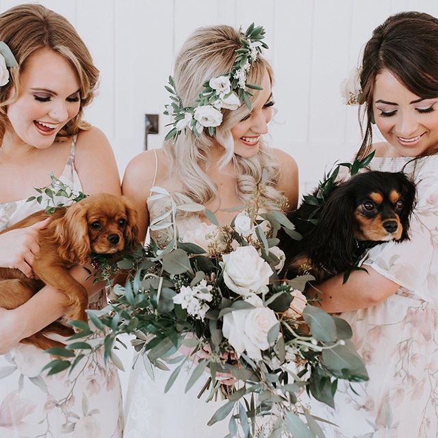 I'm just going to leave this little puppy love moment right... around... here for your Sunday morning scrolling!! Happy Weekend, you epic rockstars you! ♥️ #cutnessoverload #whitewedding #puppylove #love #toocute #epicloveepiclife #paws