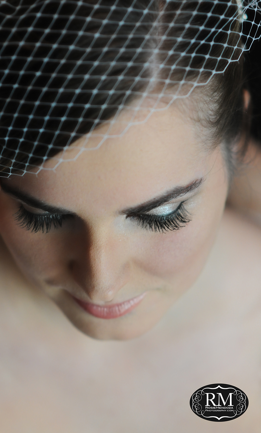 Bride's flawless makeup accented by French tulle hair piece