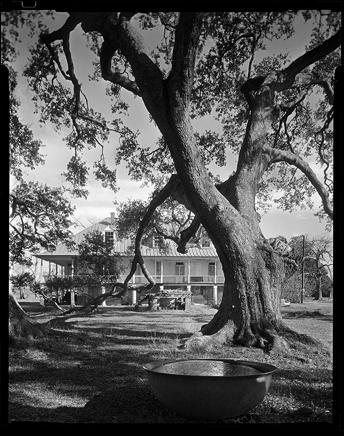 Homeplace Plantation 8x10.jpg
