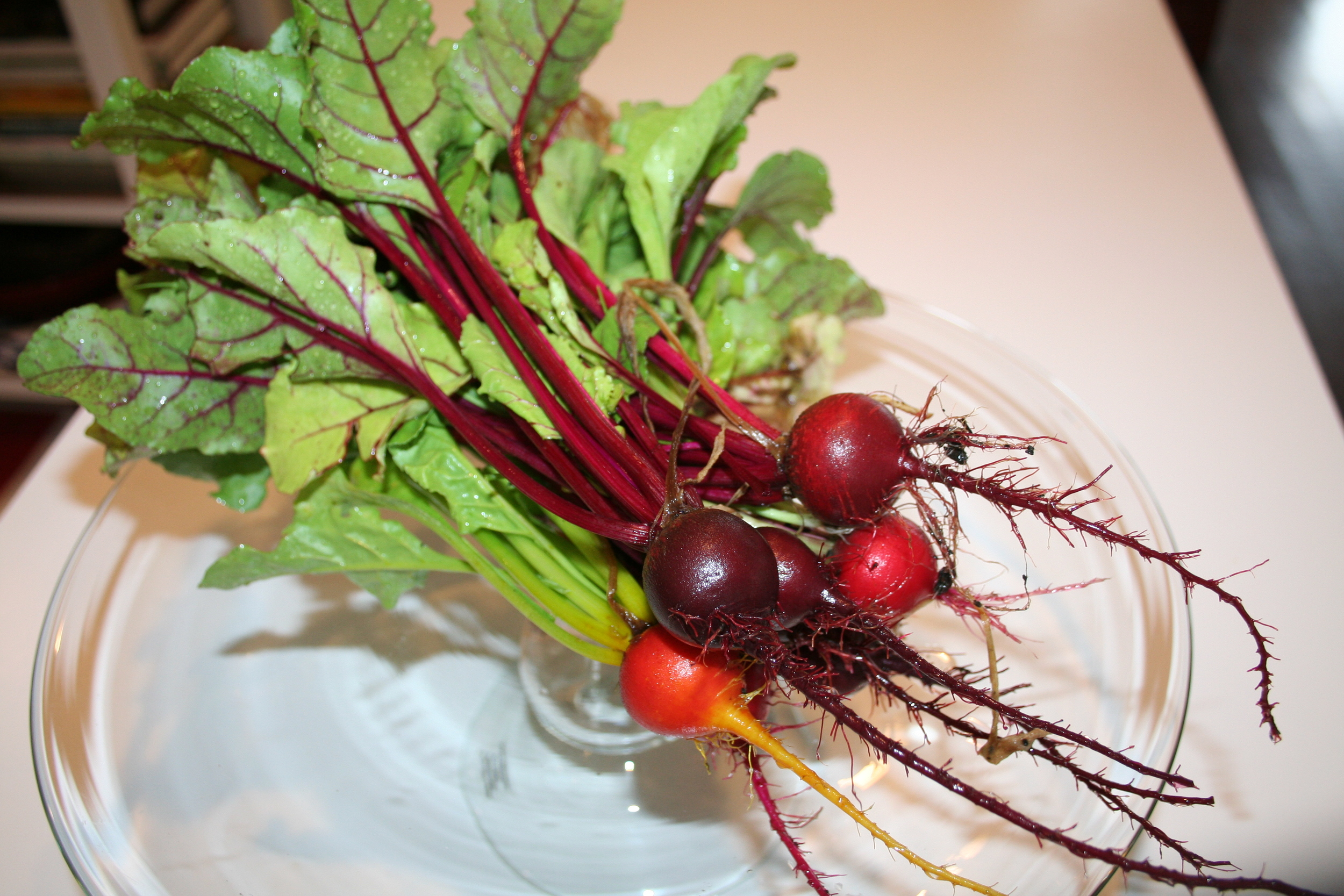 Sunset Green Home Garden Beets.JPG