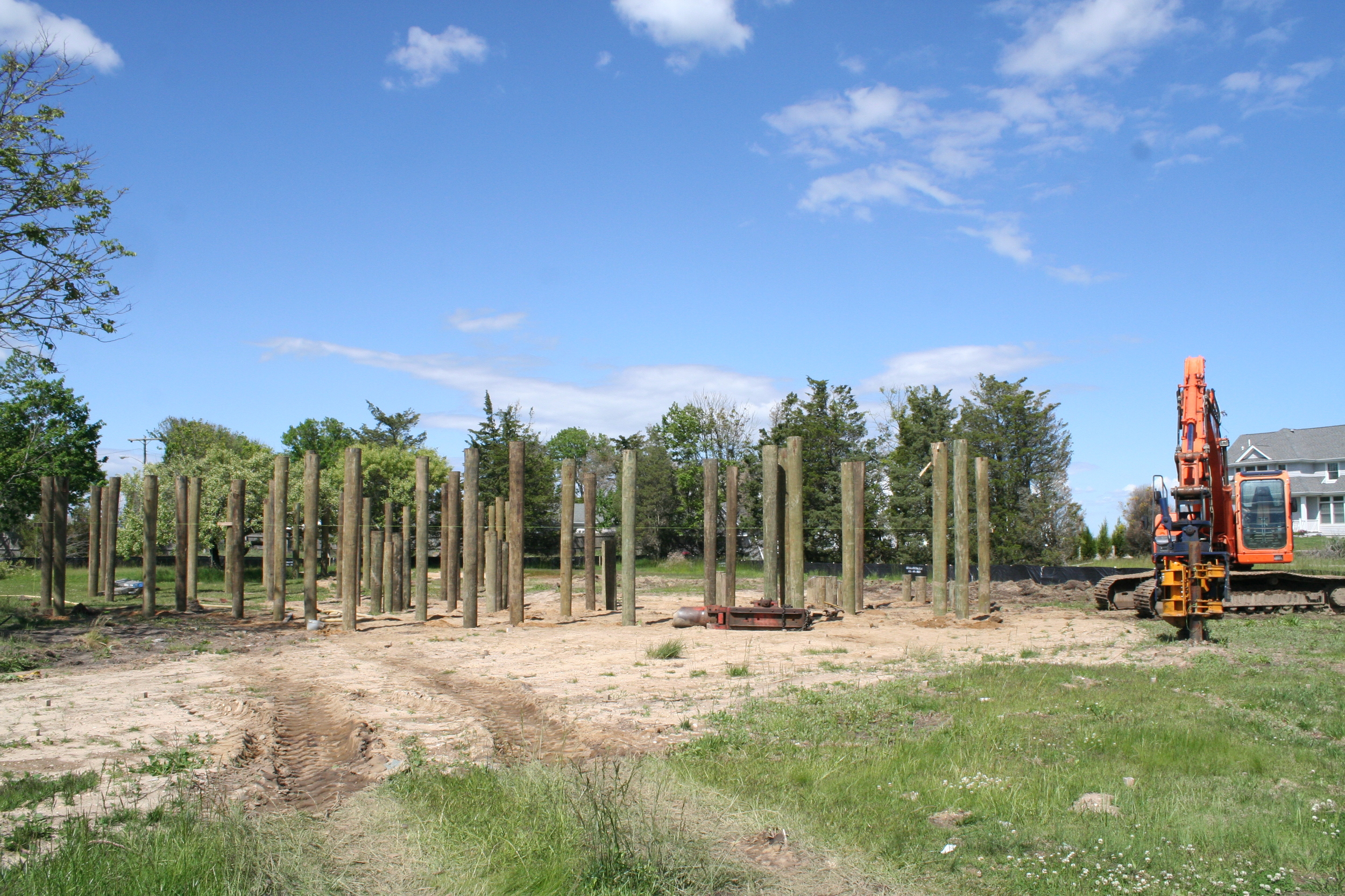 Several dozen of our pilings already in place!