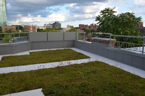 Six varieties of sedum comprise the home's green roof garden