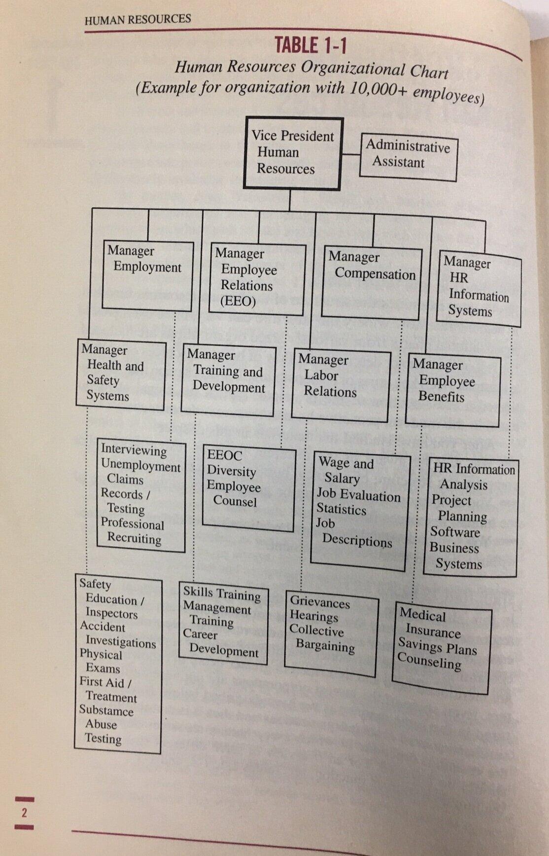 hr-org-chart-large.jpg