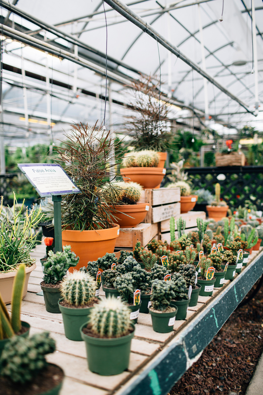 brookecourtney_blog_greenhouse-18.jpg