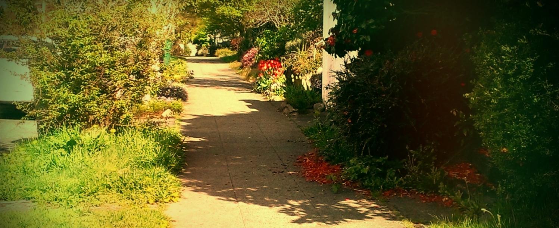 Sidewalkd.jpg
