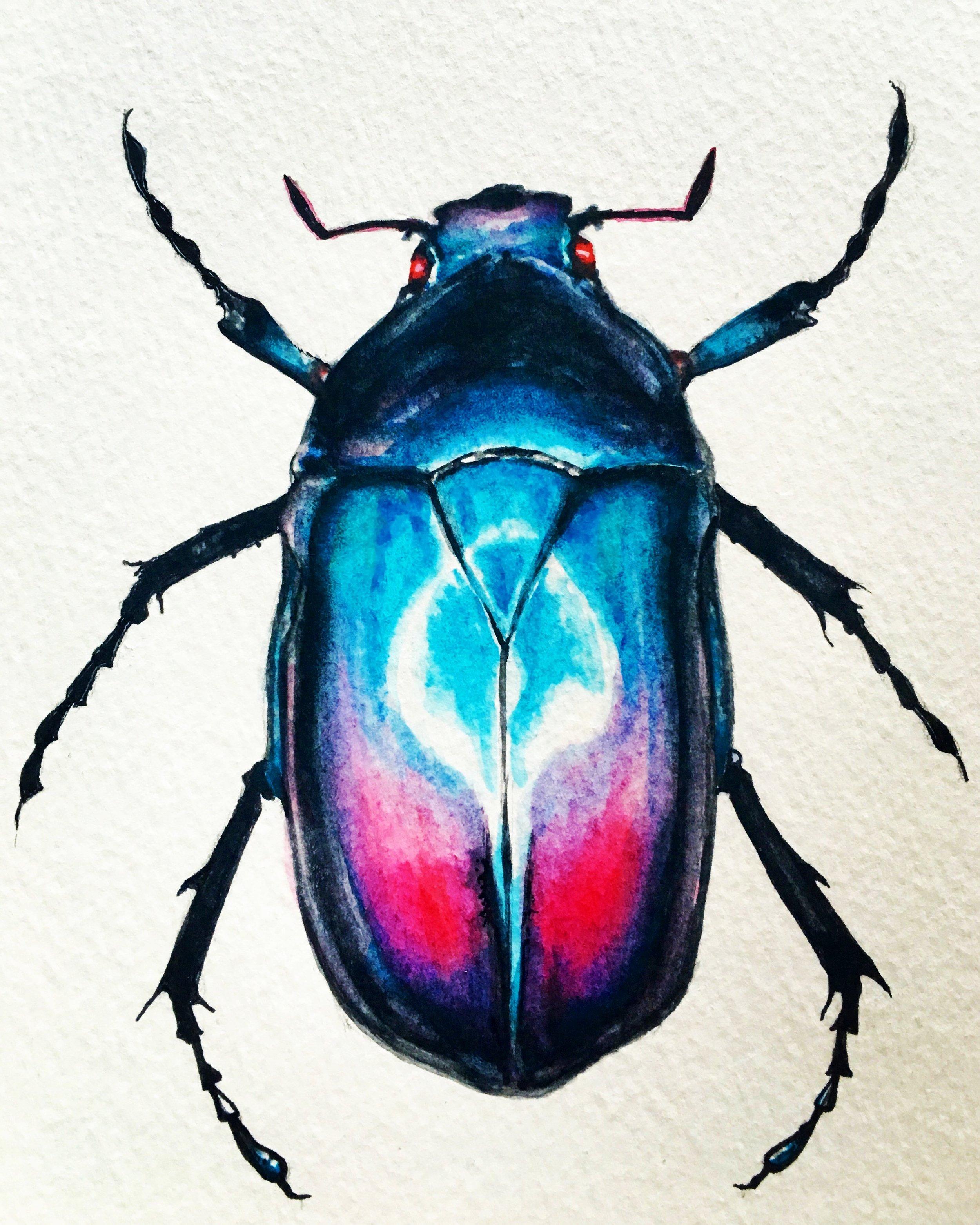 Watercolor-Beetle-Dustin-Goolsby-Art.JPG