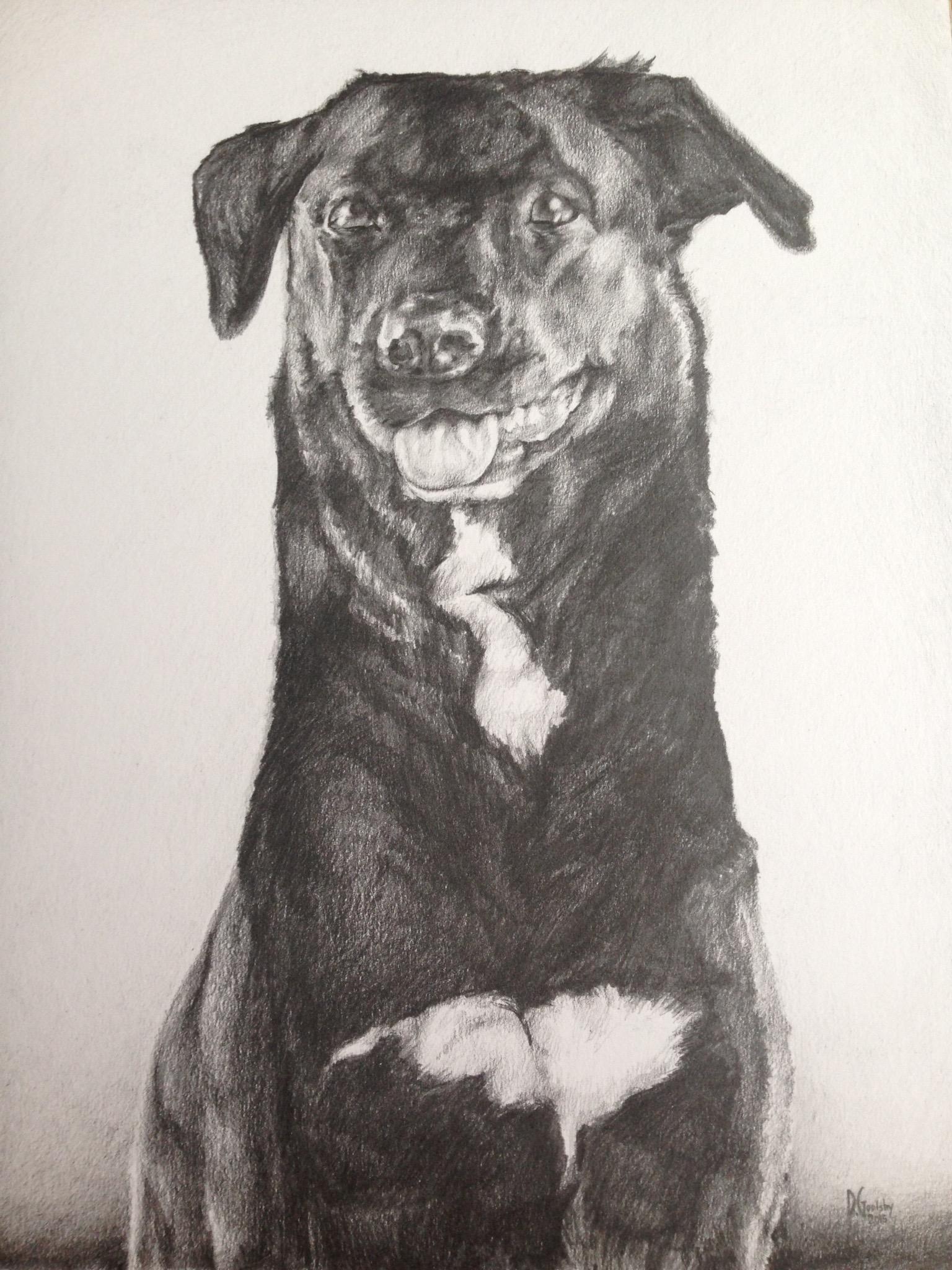 Callie's Portrait