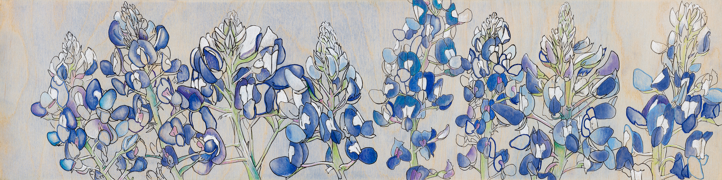SOLD Texas Bluebonnets II