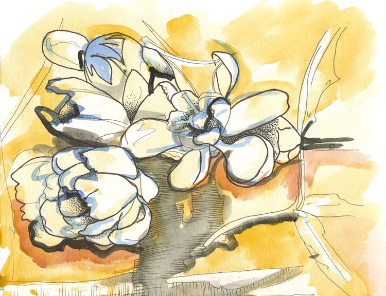 Agarita Blue