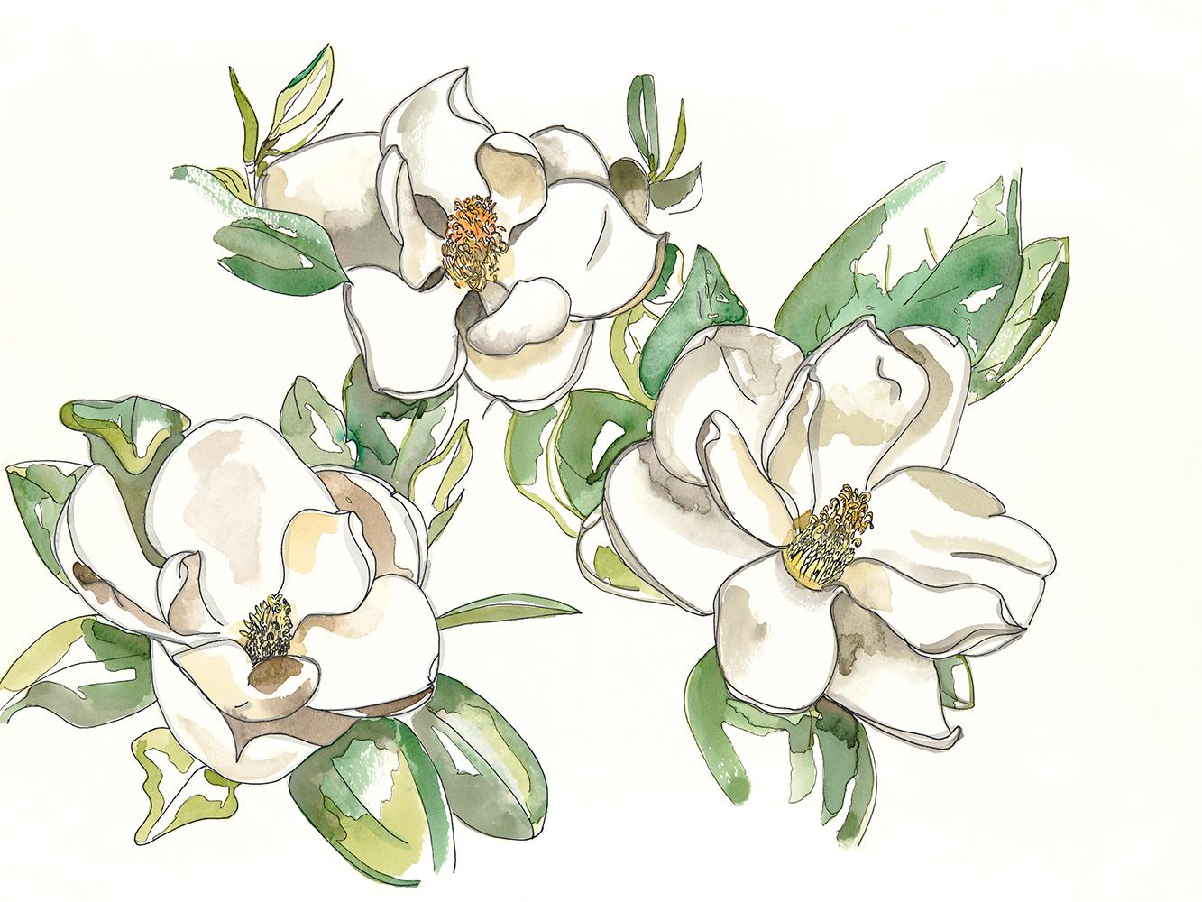 SOLD Magnolia Convalescence