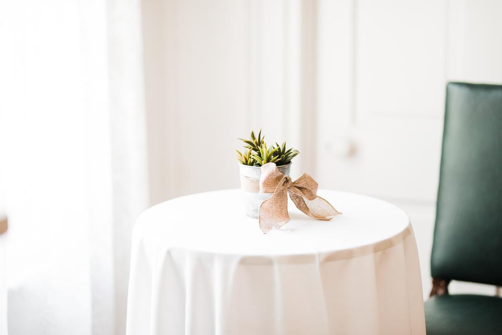 Southern Wedding, Outdoor Wedding, Summer Wedding-565.JPG