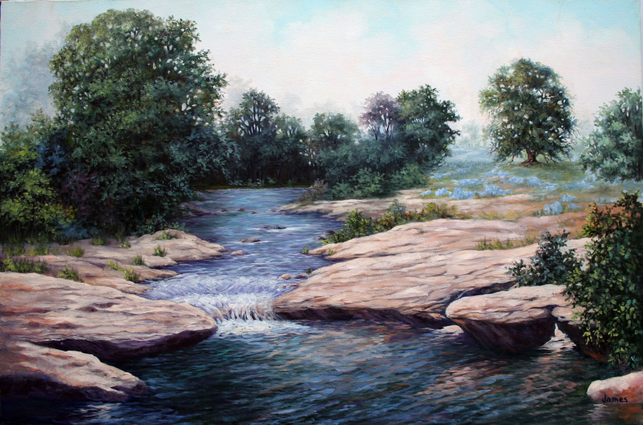 bettyjames_hillcountry_20x30_oil.jpg.JPG