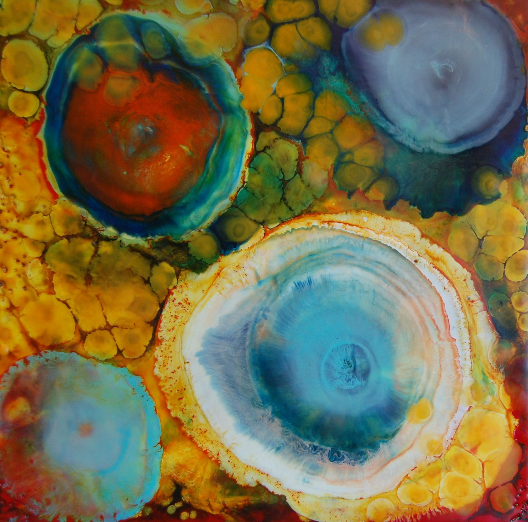 Evolution 12X12_ElizabethSchowachert_Encaustic.jpg