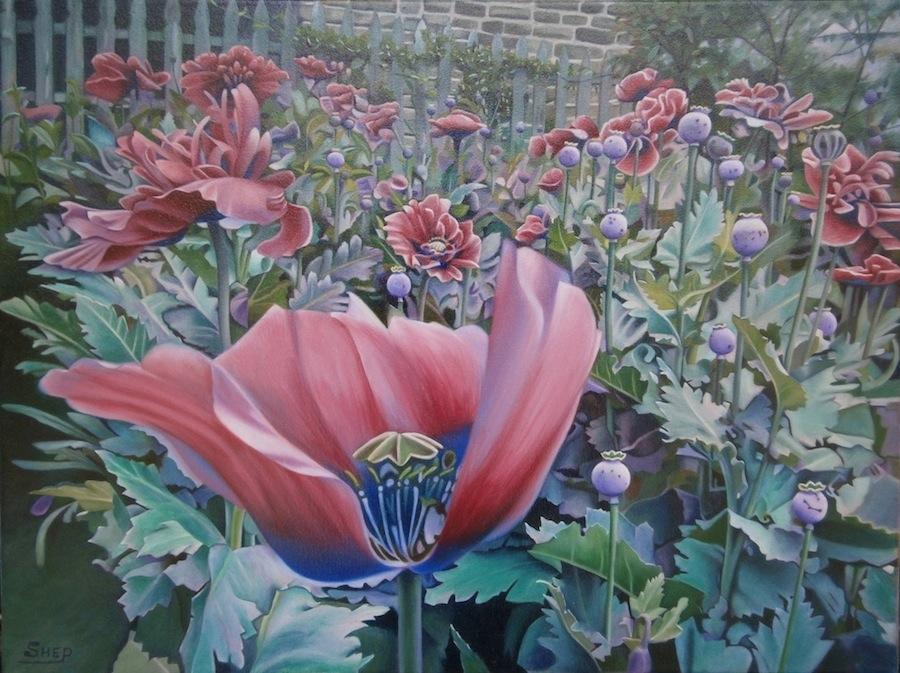 "HM ""Texas Poppie"" by Bob Shepherd Oil on Canvas"
