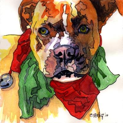 Image 2 boxer.jpg