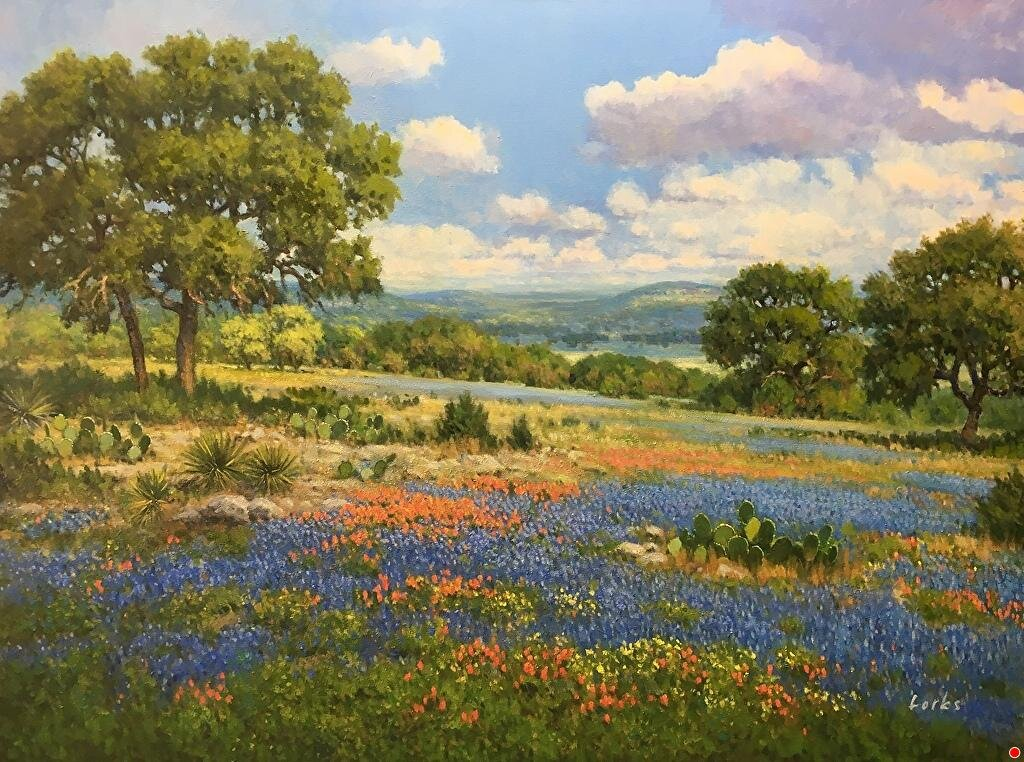 David Forks Hill Country Spring .jpg