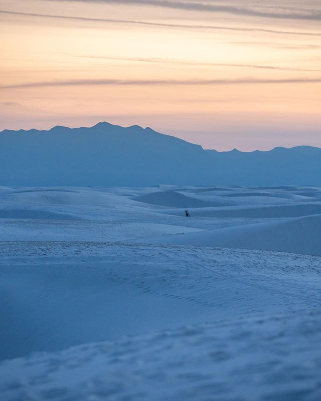 I can't believe I waited so long to visit this place. Was dreaming of heading back the moment I left. [White Sands National Monument, NM - March 2019 - #optoutside #getoutstayout #solarlife #explore #wanderlust #whitesands #spiritofthewest #soulofthewild]