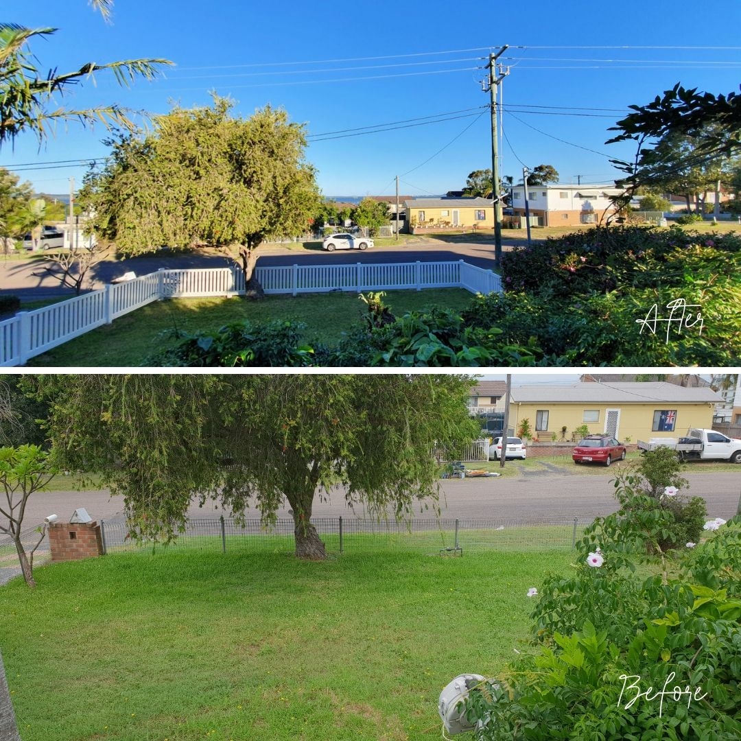 Before and after - main house front yard.jpg