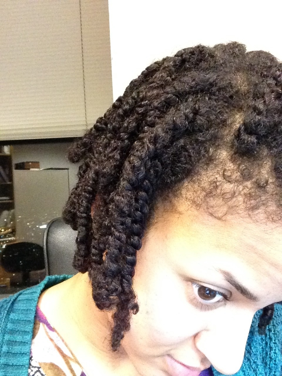 Flax Seed Gel Twists