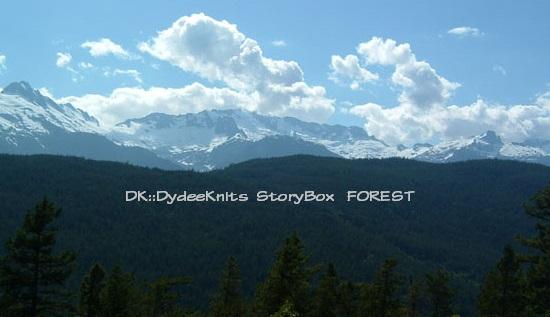DK_StoryBox-ForestPicture.jpg