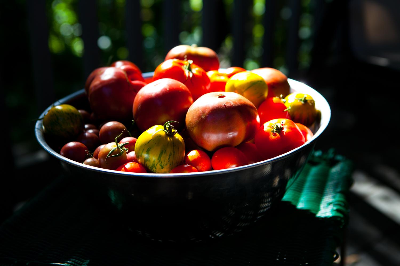 Food-019.jpg