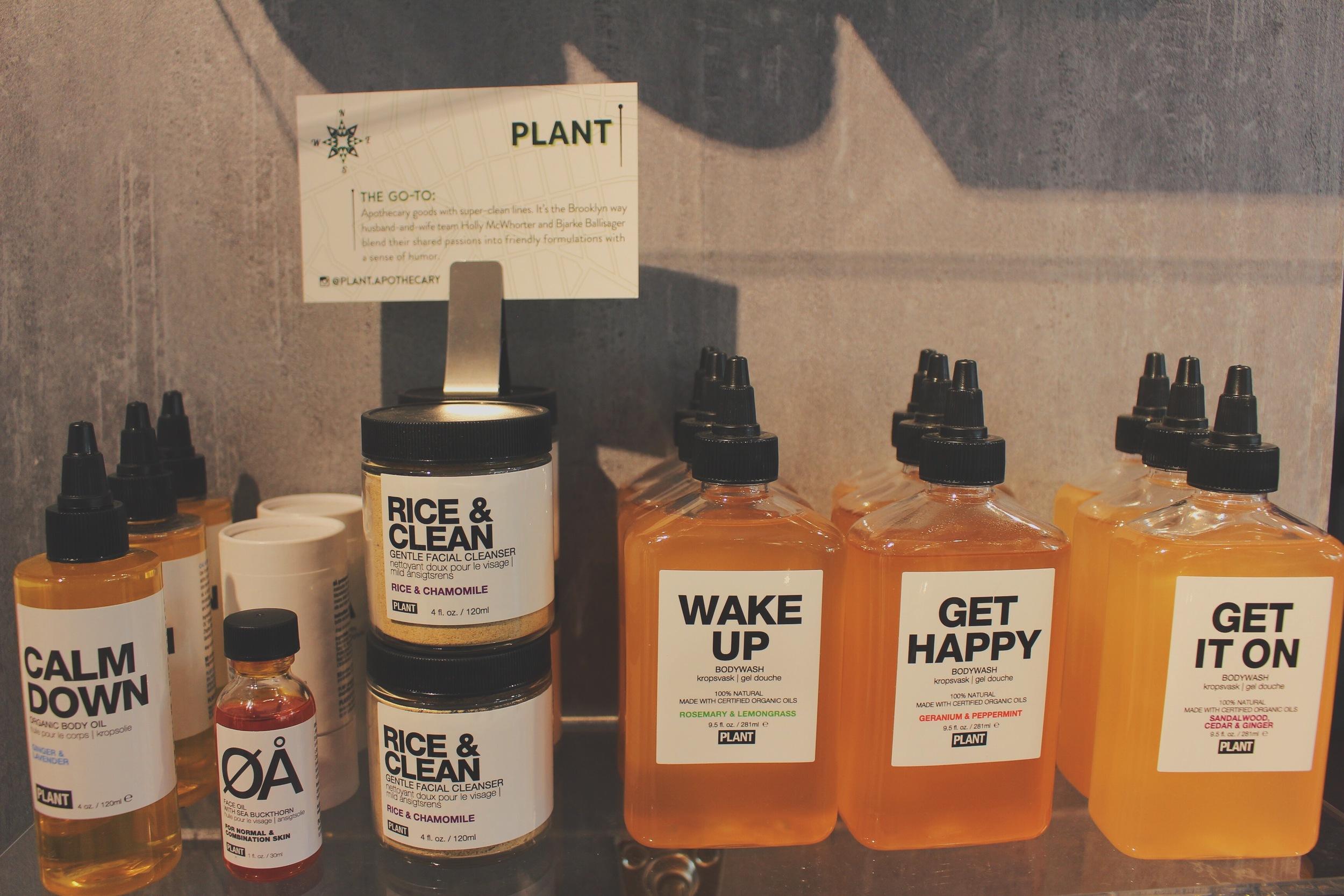 PlantStory.jpg