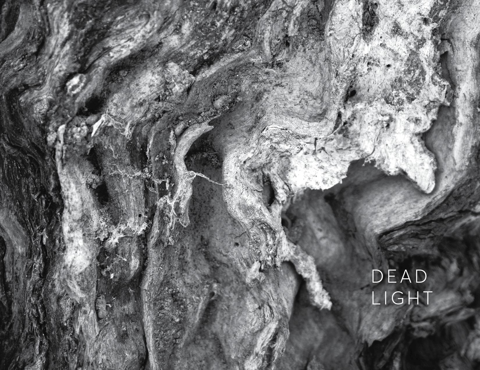 Dead Light.jpg