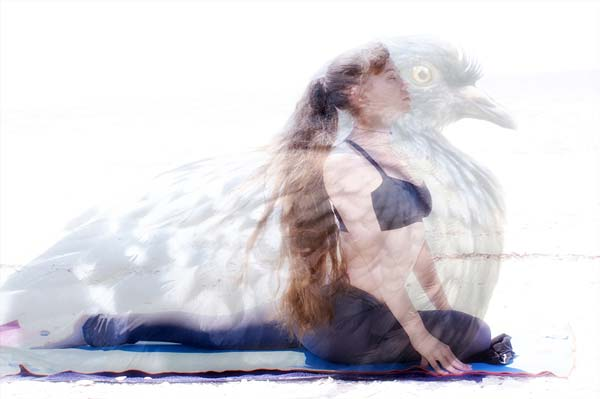This image of pigeon pose that I found online makes me feel weird. :)
