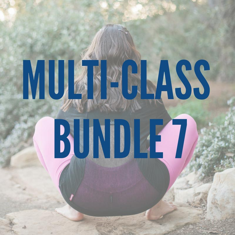 bundle-7-graphic.jpg
