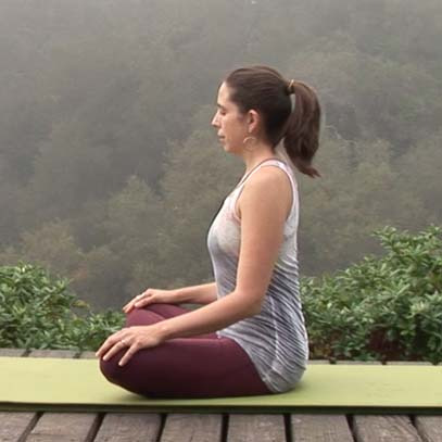 Forest Practice from Strong Vinyasa Flow DVD    65 min
