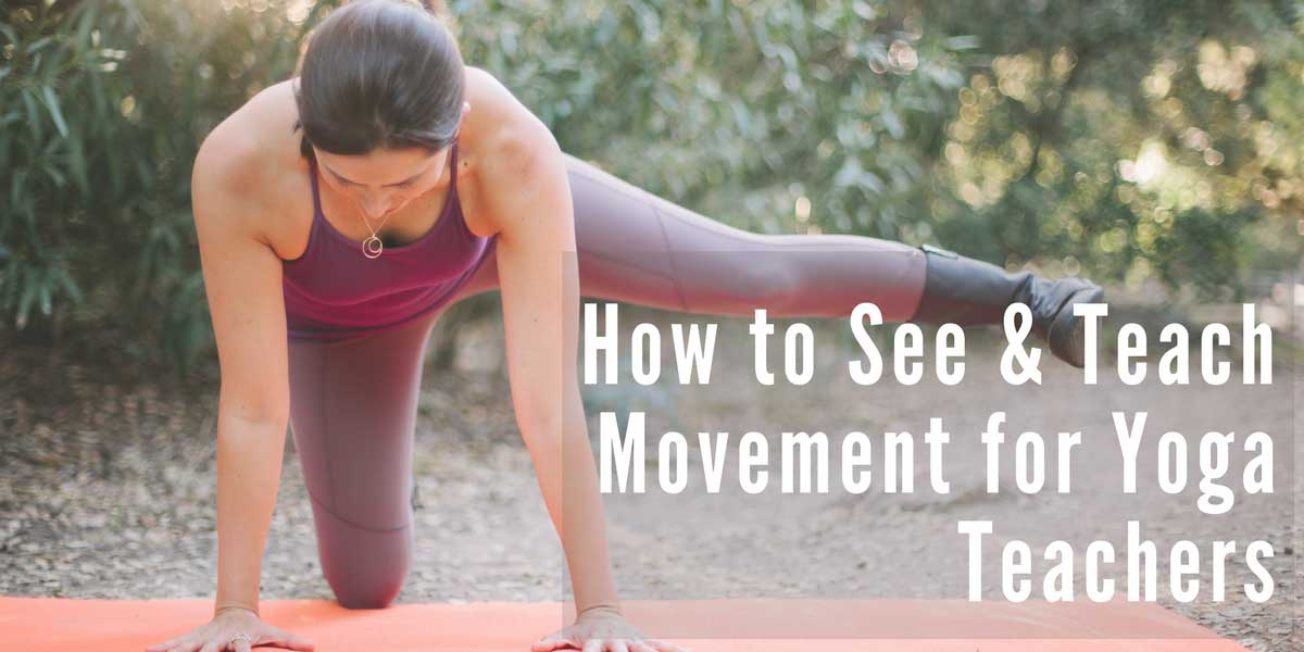 Online Yoga Anatomy Course & Movement Science Training