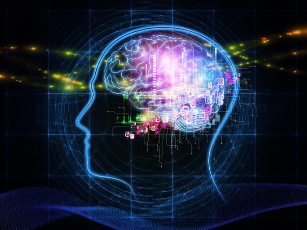 human-mind-illustration.jpg